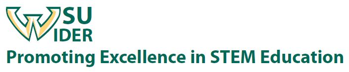 Promoting excellence in STEM education WIDER banner